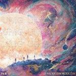 Macrocosm Microcosm [2 FOR £22] (LP)