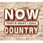 Now That's What I Call Country (CD)