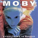 Everything is Wrong (LP)